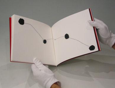 Maiolino Livro de Artista